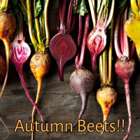 Eating Healthy – The Glory of Autumn Beets